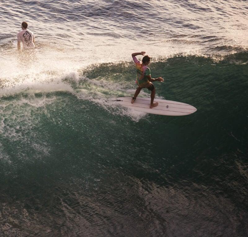 Joel Fitzgerald Twin Fin Surfboard Fish
